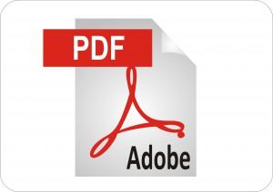 1453ny pdf nyilatkozat